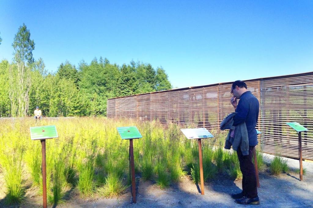 15-Knots-temporary-installation-show-garden-designed-by-ATLAS-Lab-for-the-Jardins-de-Metis-2012-2013-Canada-Shapedscape-Landscape-Architecture-Matters-3-6-1414772296
