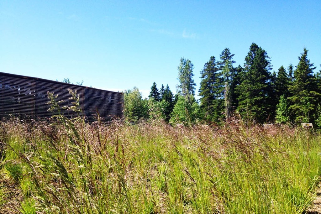 15-Knots-temporary-installation-show-garden-designed-by-ATLAS-Lab-for-the-Jardins-de-Metis-2012-2013-Canada-Shapedscape-Landscape-Architecture-Matters-6-89-1414772301