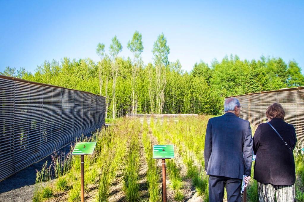 15-Knots-temporary-installation-show-garden-designed-by-ATLAS-Lab-for-the-Jardins-de-Metis-2012-2013-Canada-Shapedscape-Landscape-Architecture-Matters-9-4-1414772306